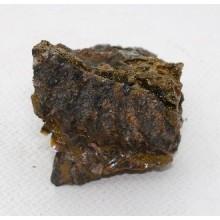 АММОНИТ №749 (фрагмент)